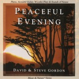 "آلبوم ""Peaceful Evening"" از دو هنرمند David & Steve Gordon"